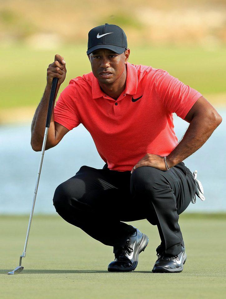 "Tiger Woods has called Joe Lewis ""my business mentor"""