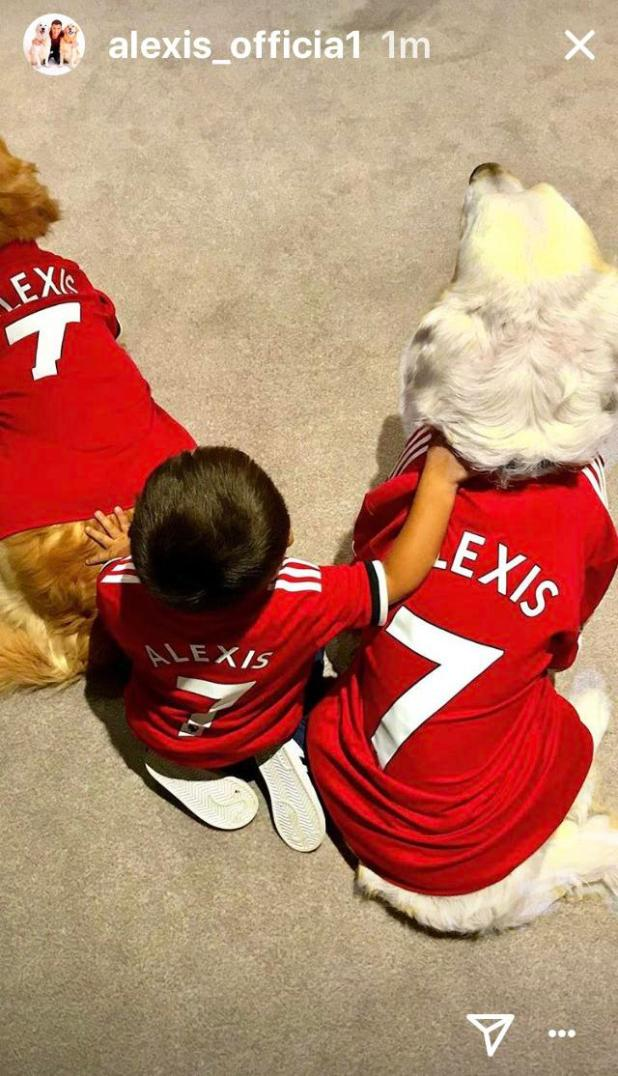 nintchdbpict000380304755 - Alexis Sanchez's dogs wear Manchester United shirts after arriving at team hotel