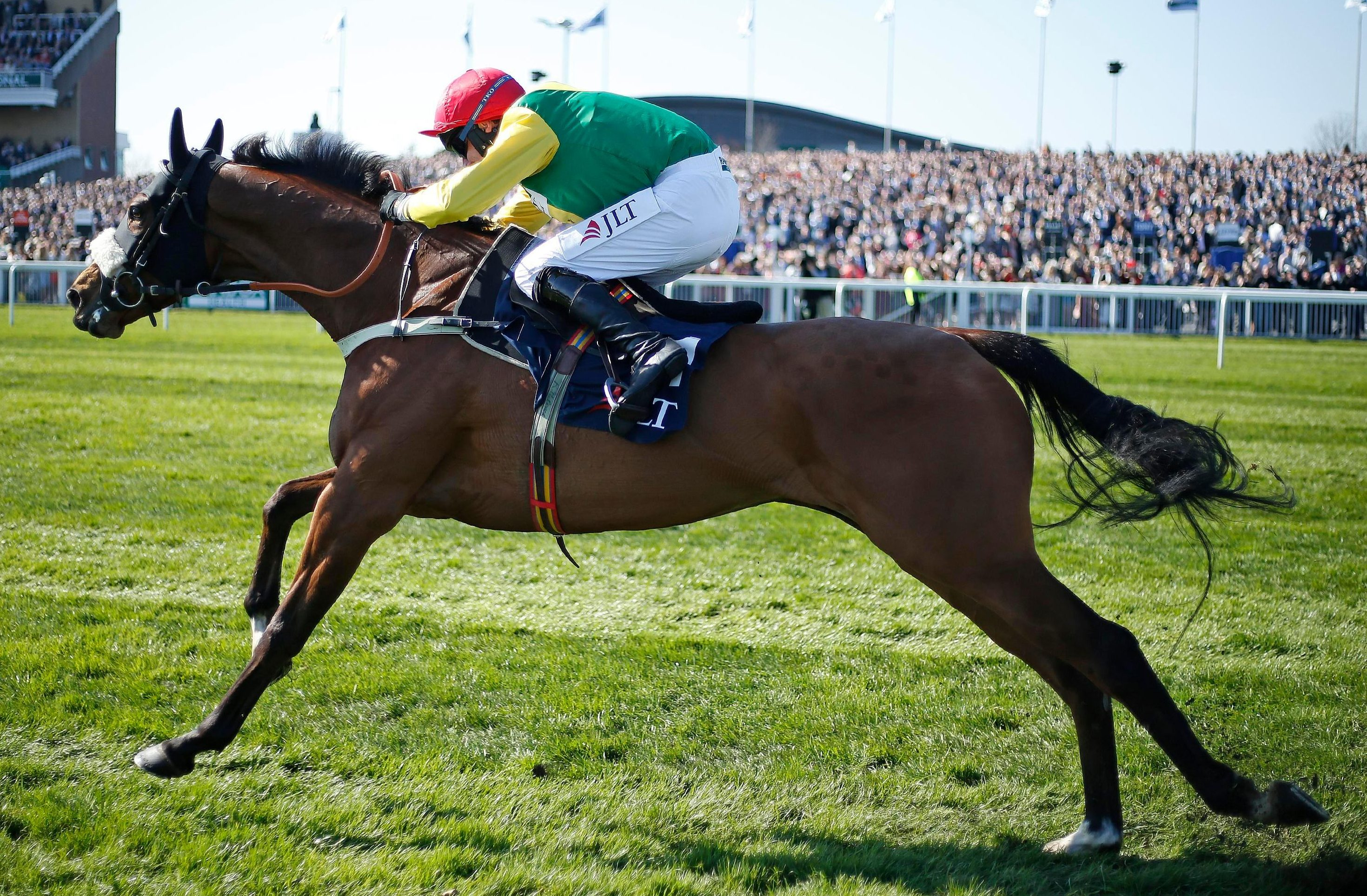The second favourite for the Ryanair Chase has been ruled out for the season with a leg injury