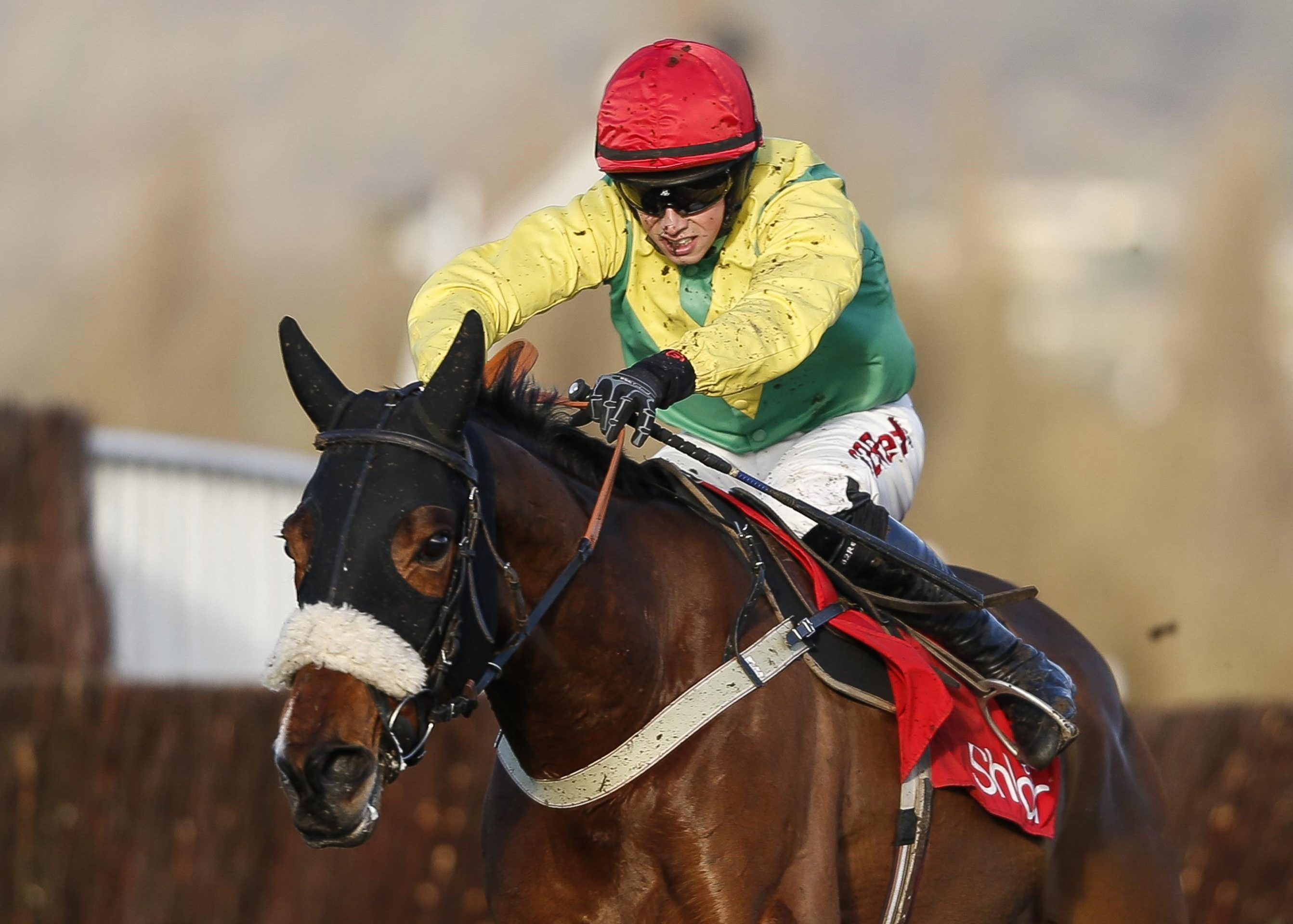 Foxy Norton is out of the Cheltenham Festival next month
