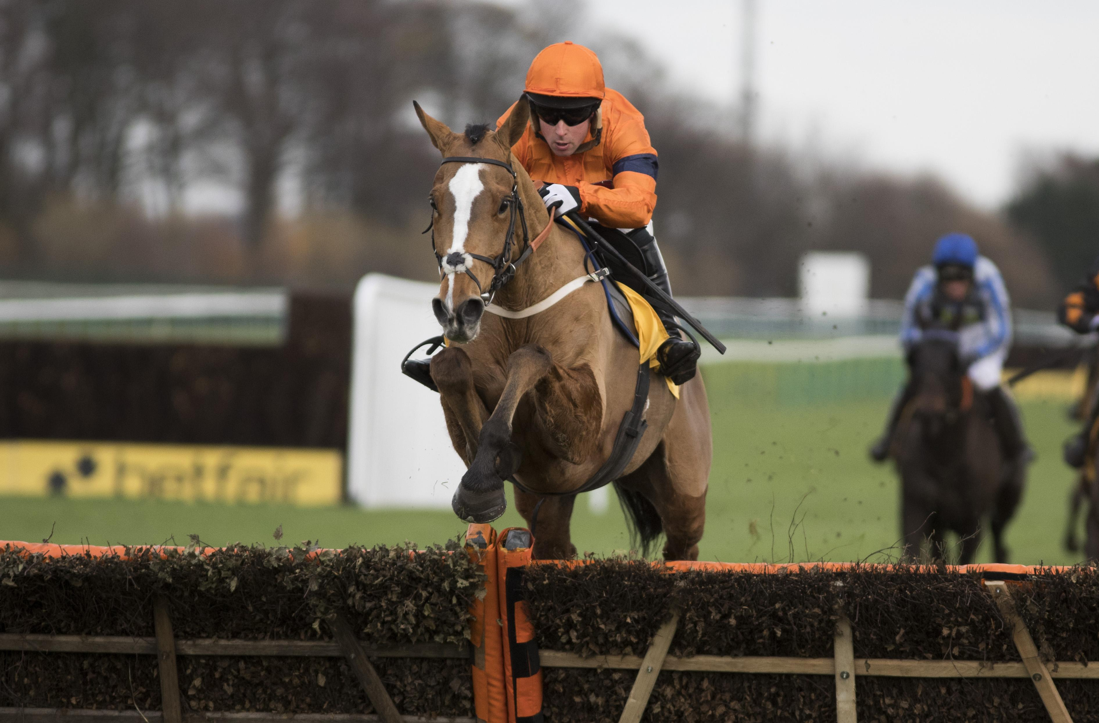 Sam Spinner to head for Aintree after Cheltenham disappointment