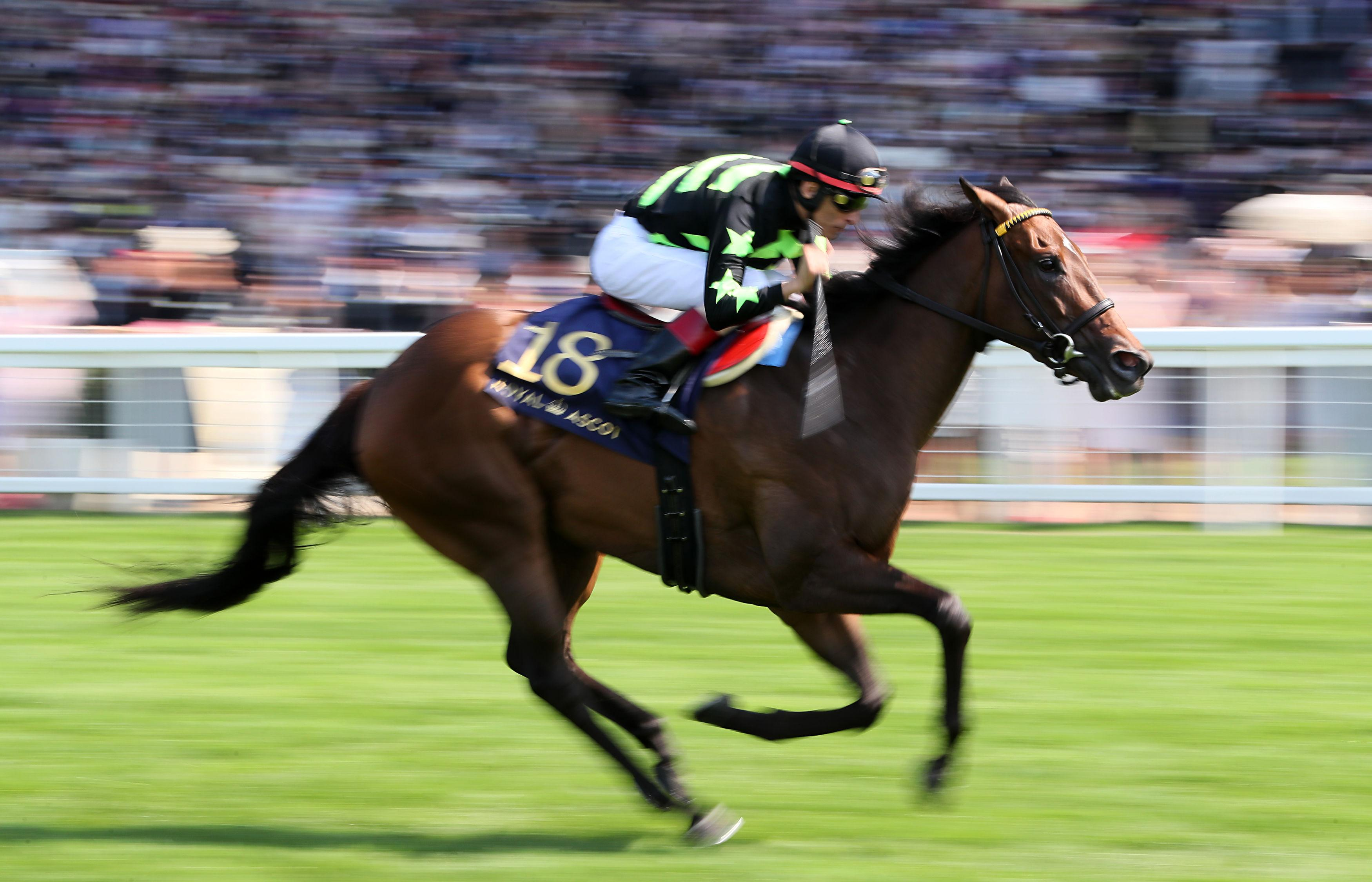 Is Lady Aurelia a good thing for the Kings Stand?