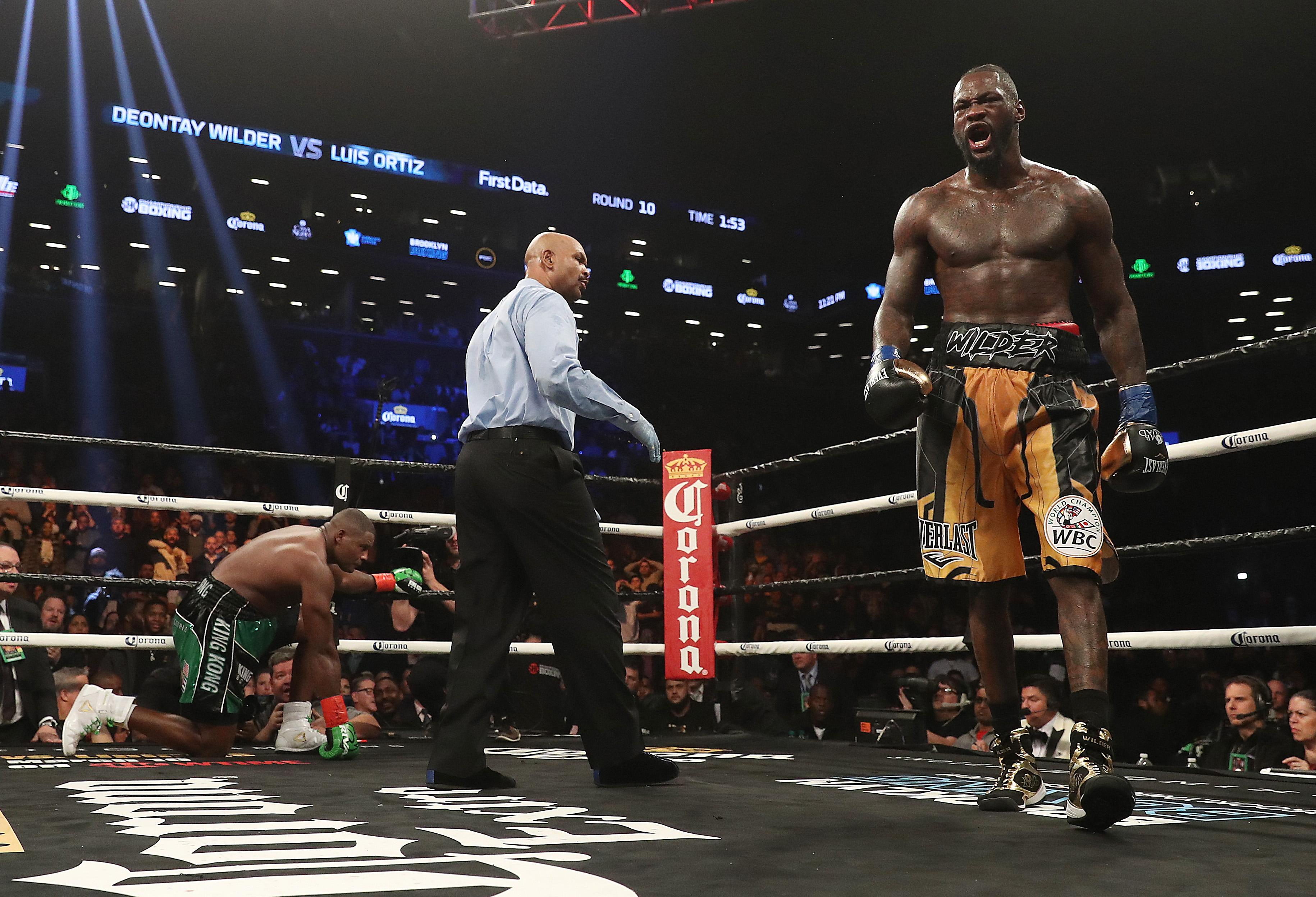 Wilder's last win was the tenth-round stoppage of Cuba's Luis Ortiz in March