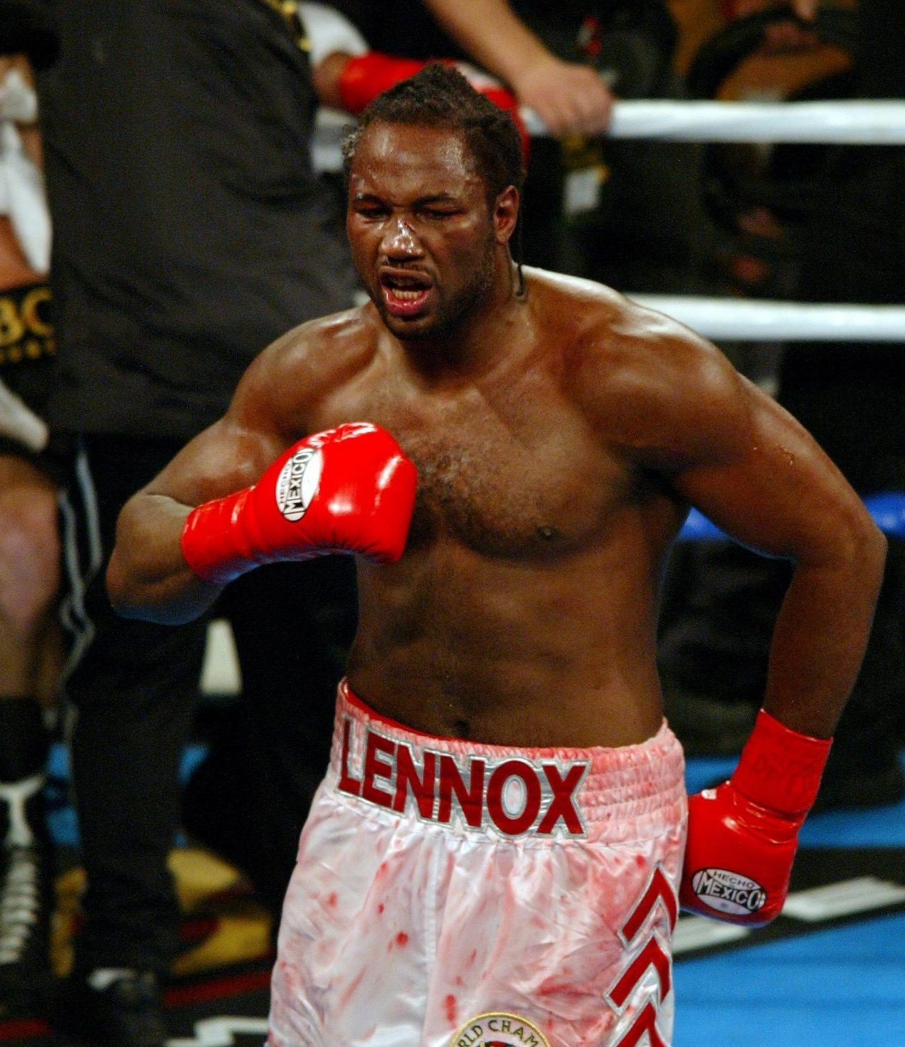 Lennox Lewis was the last man to be sole and undisputed world heavyweight champ