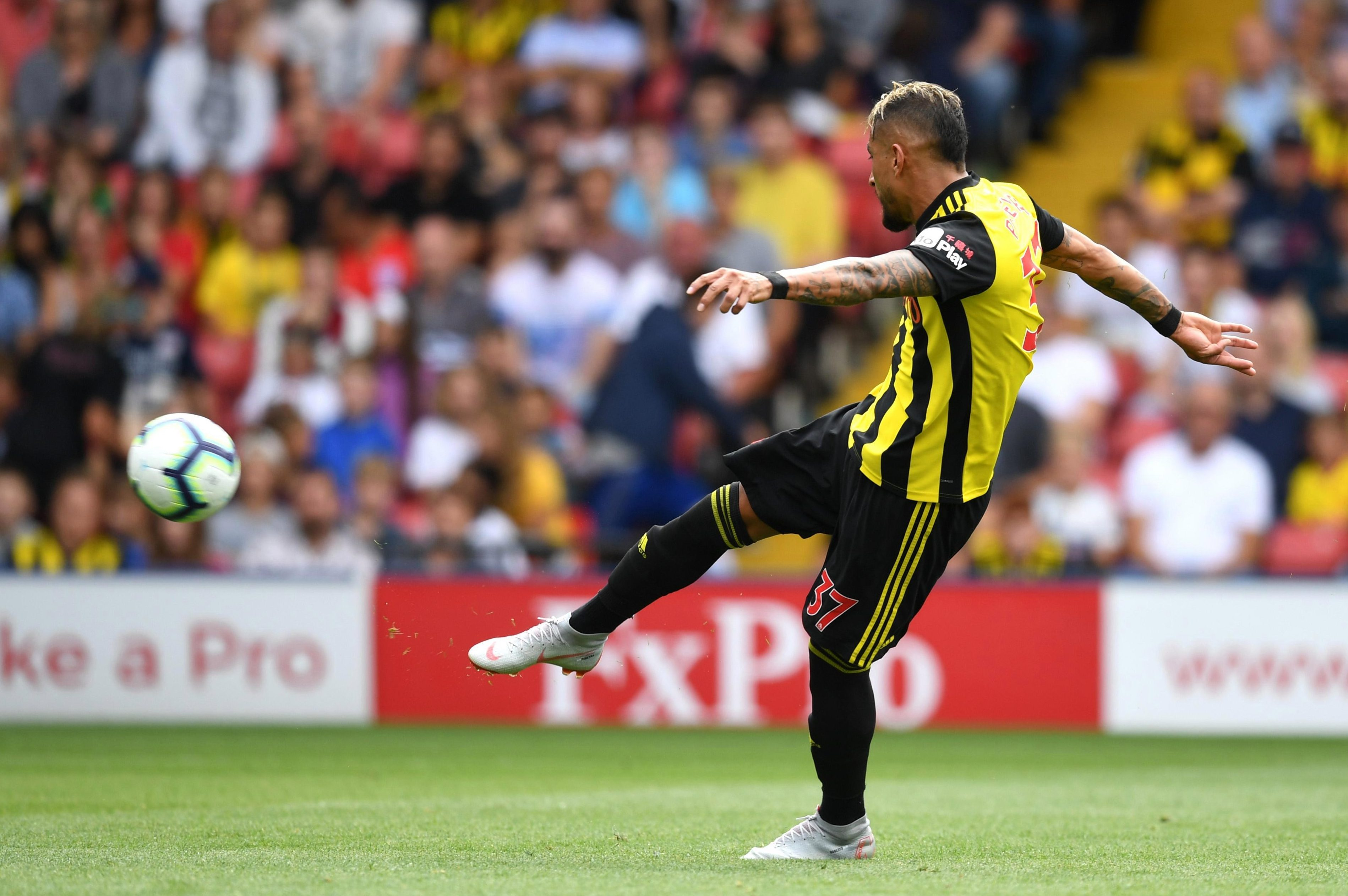 Roberto Pereyra got the Hornets buzzing in their very first game