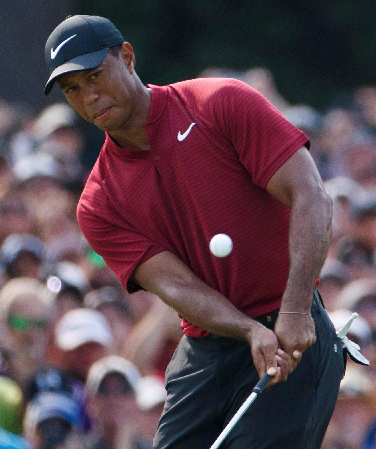 Tiger Woods looked like a chip off the old block as he came second at the weekend