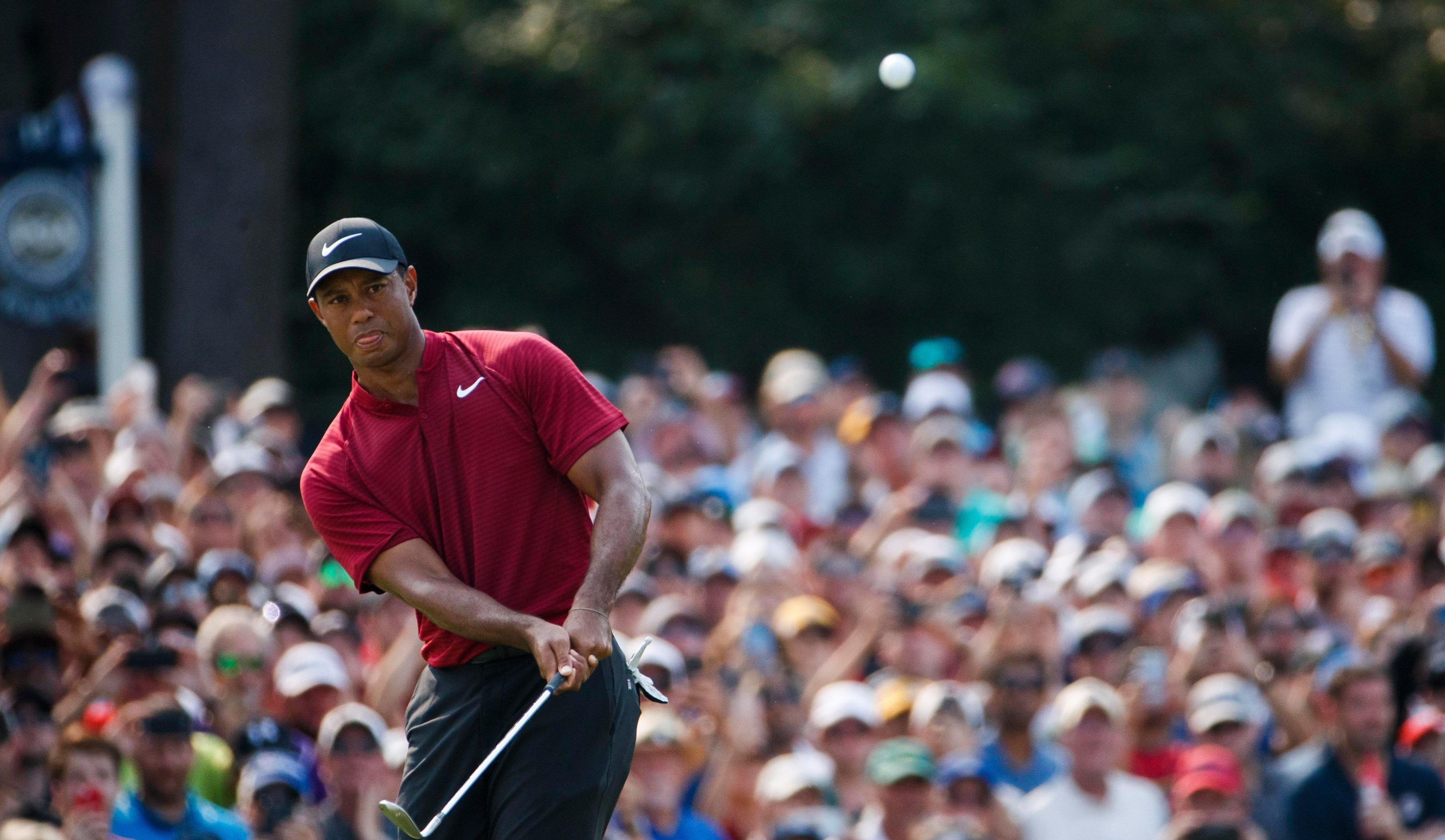 Nick Faldo has high expectations for 14-time Major winner Tiger Woods