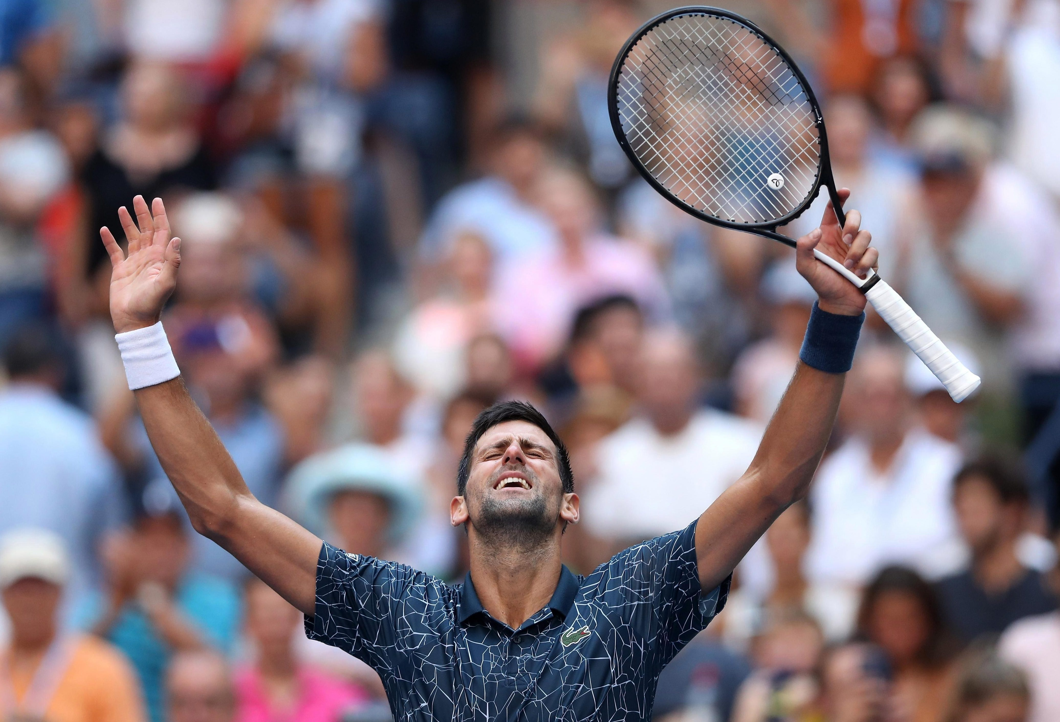 Novak Djokovic is through to the US Open quarter-finals and should face Roger Federer