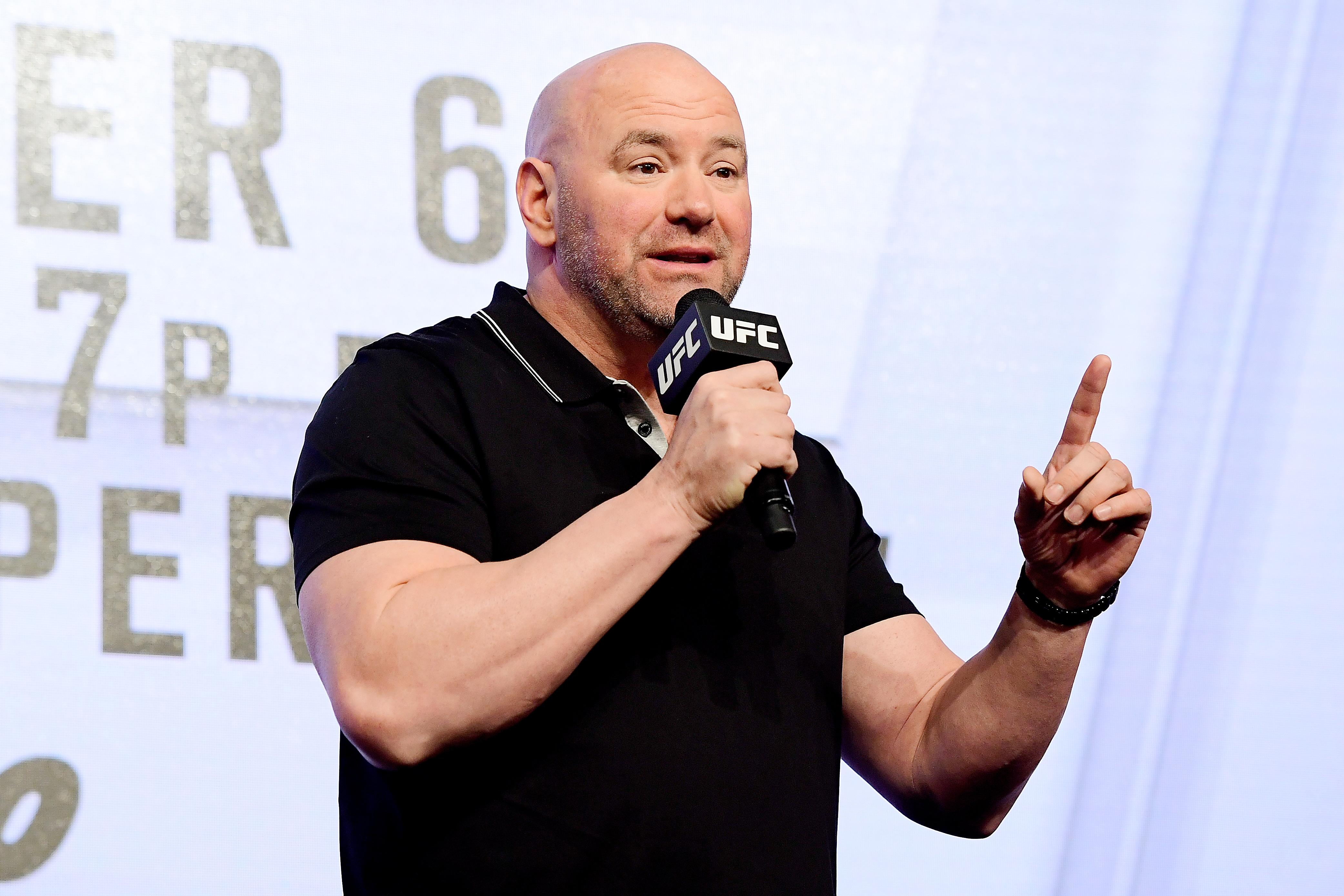 Dana White has hit out at Logan Paul's idea to try his hand at MMA
