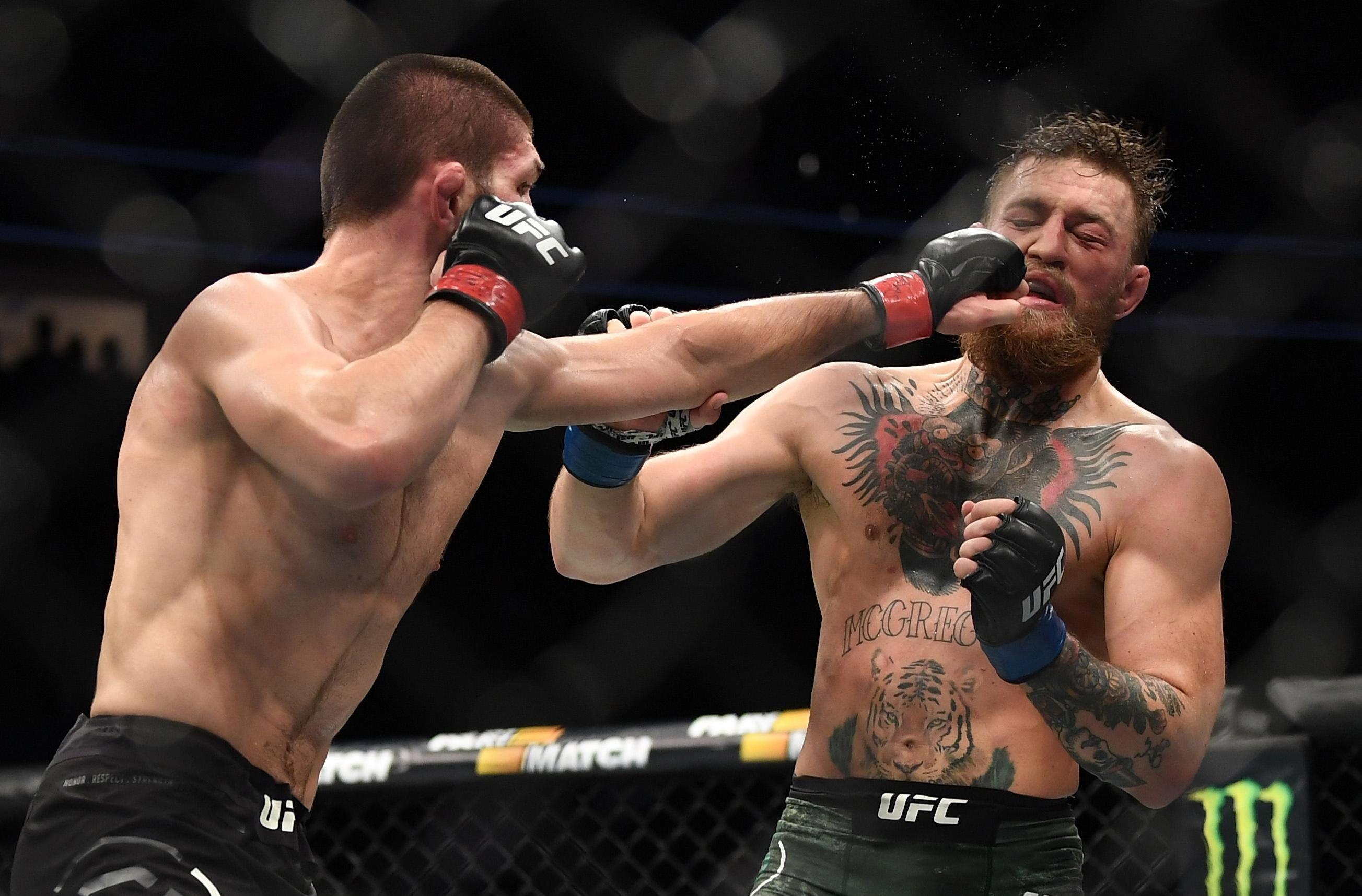 The UFC fight was followed by a mass brawl which saw Khabib jump out of the ring