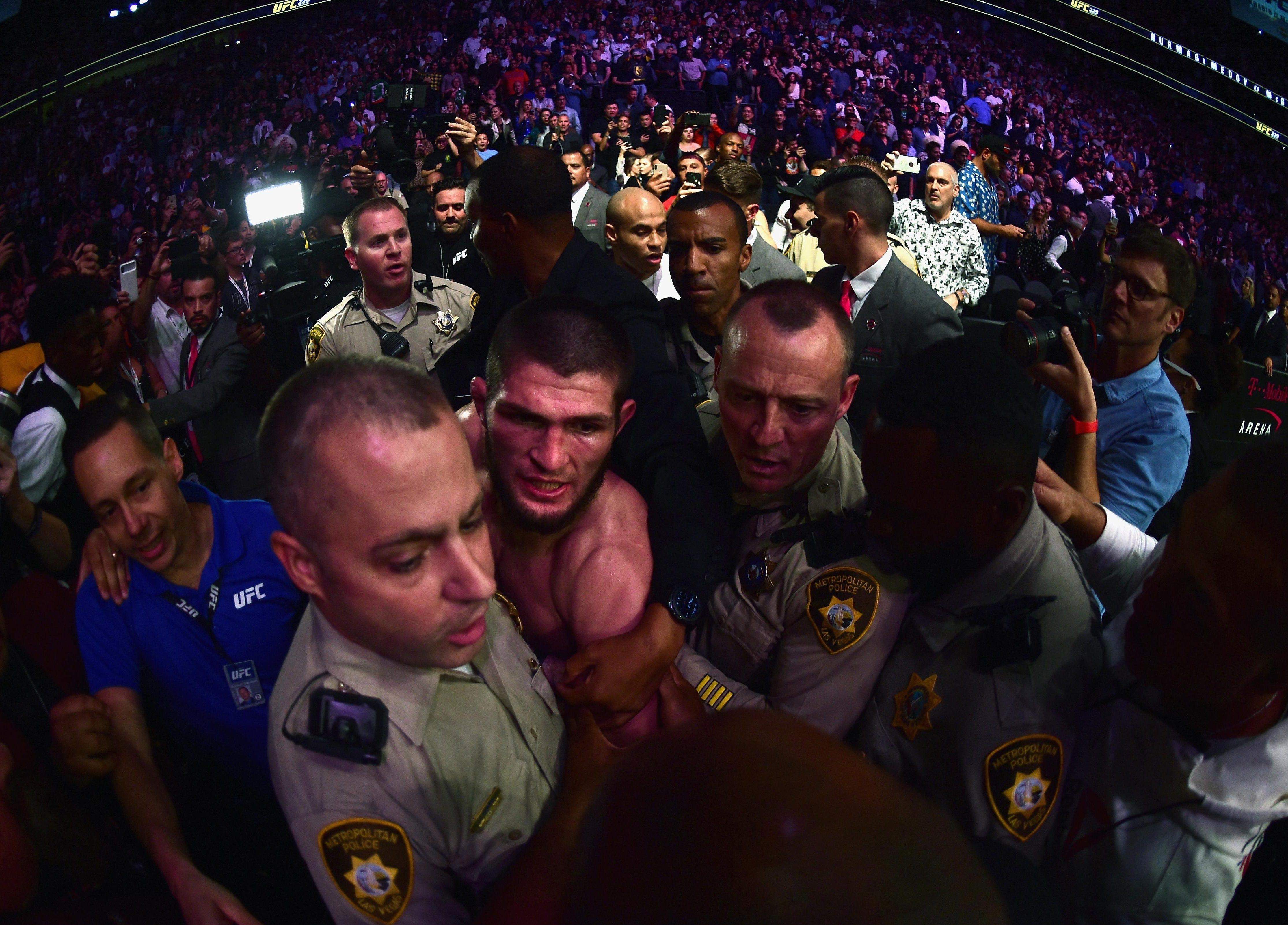 The Russian jumped out of the octagon post-fight as he brawled with McGregor's teammate Dillon Danis