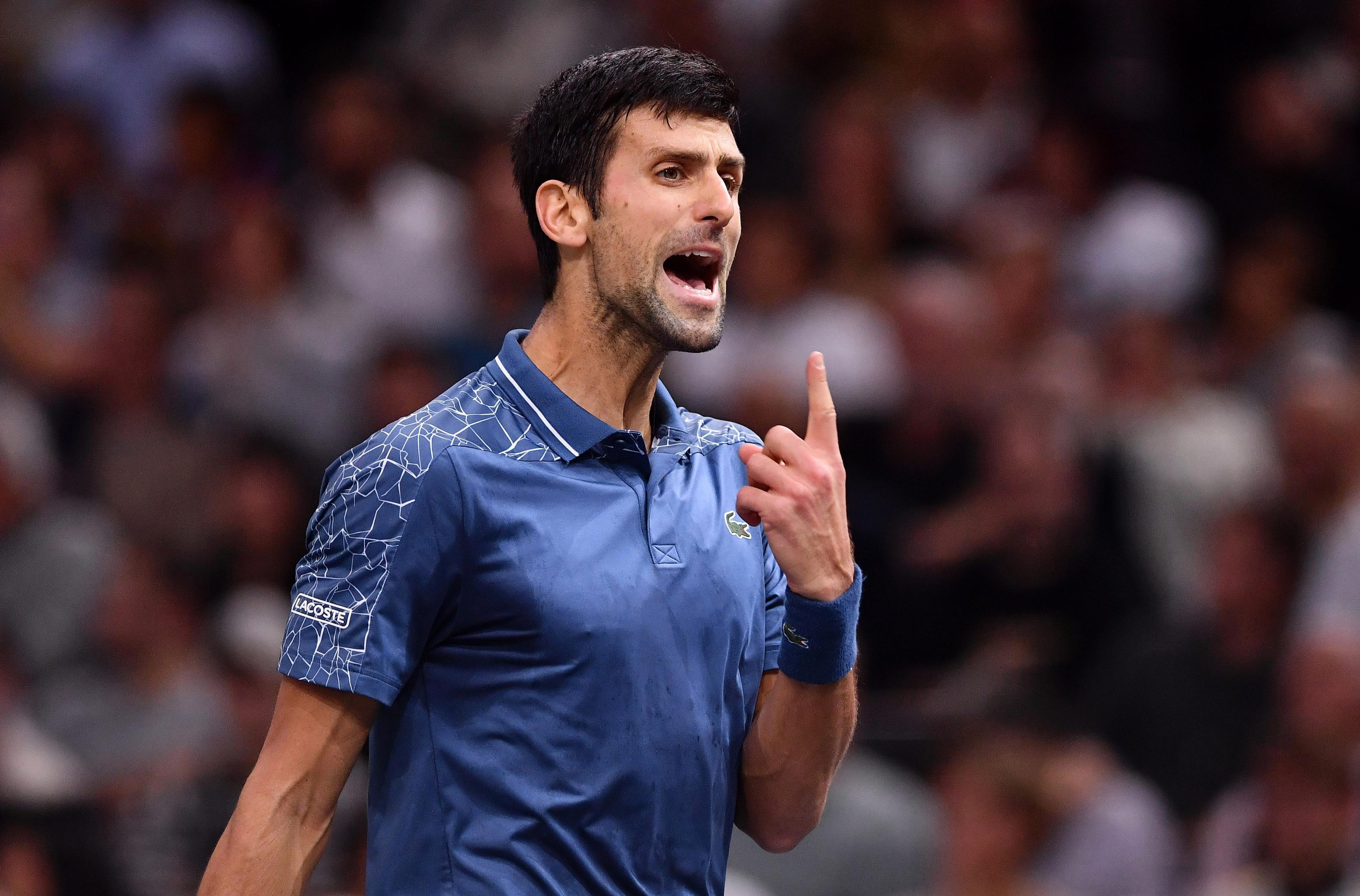 Novak Djokovic was left stunned after being thrashed in the Paris Masters final