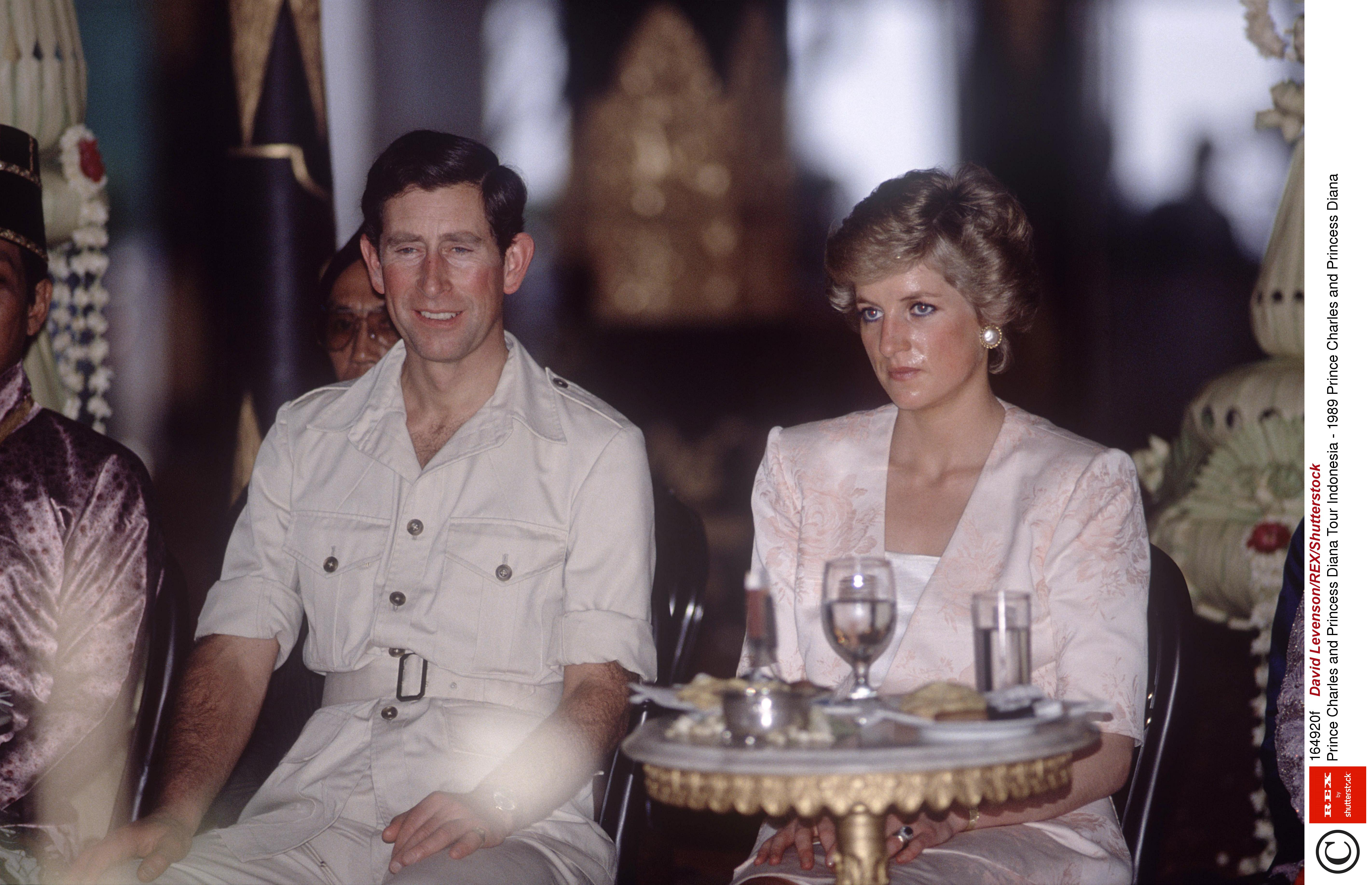 Princess Diana Confronted Camilla At A Party Over Her Affair With Prince Charles And All Hell Broke Loose