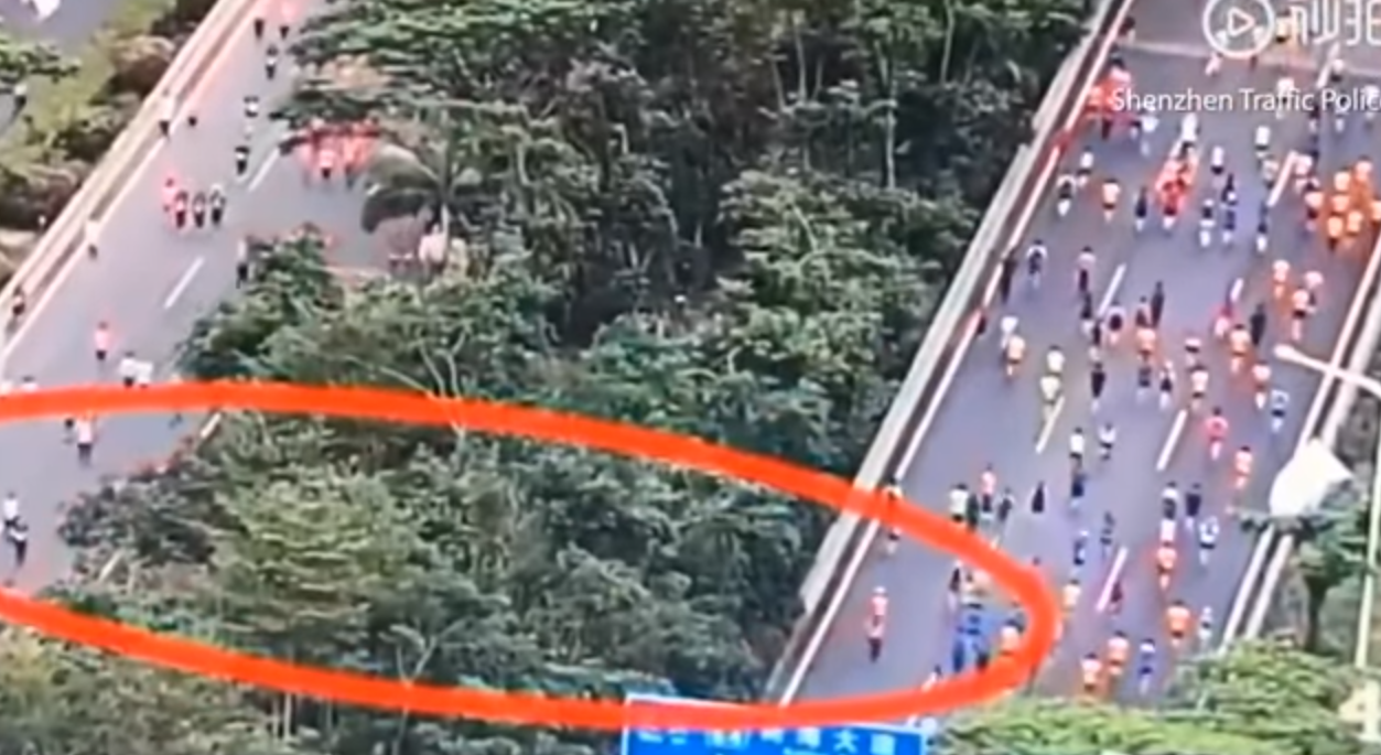 The half-marathon participants highlighted in the red ring cut through the bushes to get from the road on the left to the one on the right