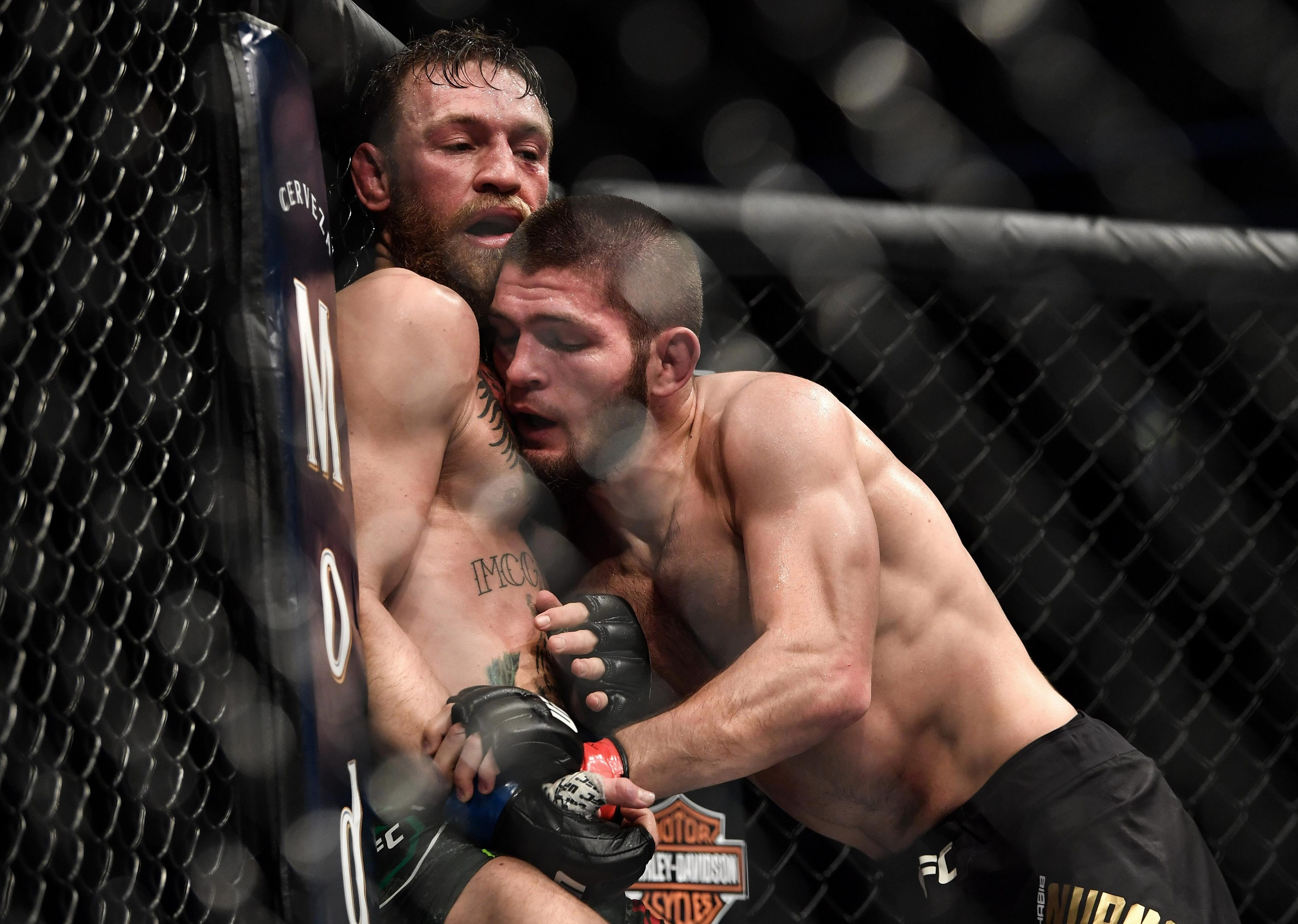 Conor McGregor and Khabib Nurmagomedov will discover their punishment on January 29