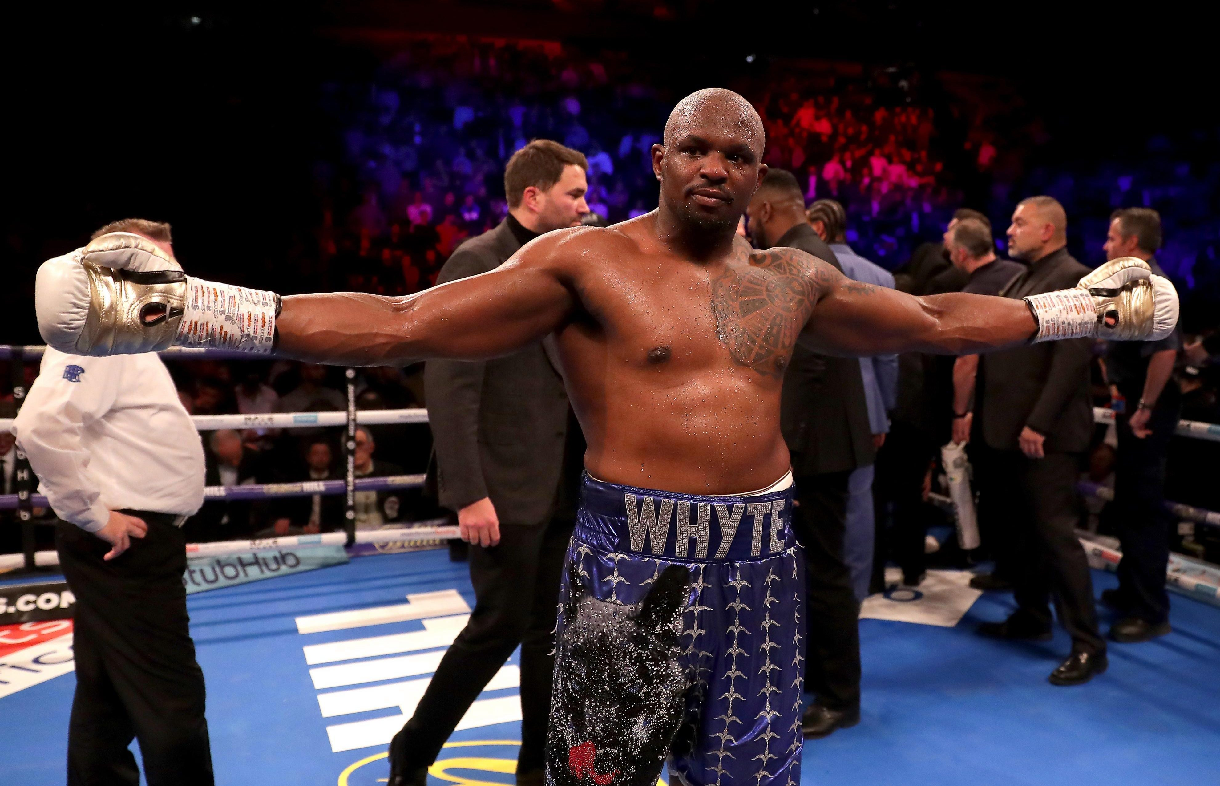 Dillian Whyte looks set to get another shot at Joshua after being knocked out in December 2015