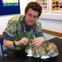 Rabbit expert Dr Richard Saunders said the disease will kill a high proportion of infected animals