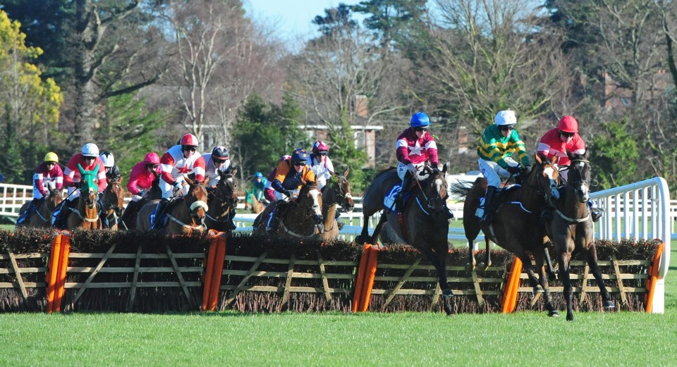 Commander Of Fleet won well in a good race last time out