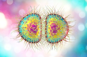Huge rise in gonorrhoea with 240 cases diagnosed a day - the STI signs you need to know