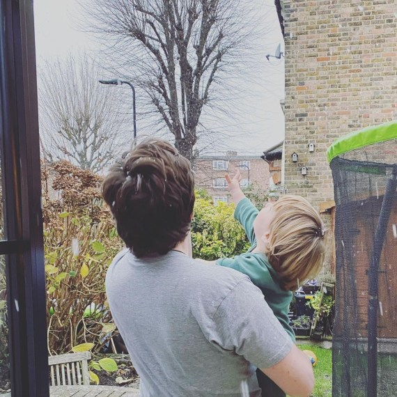 The garden has a trampoline for the boys to jump around on
