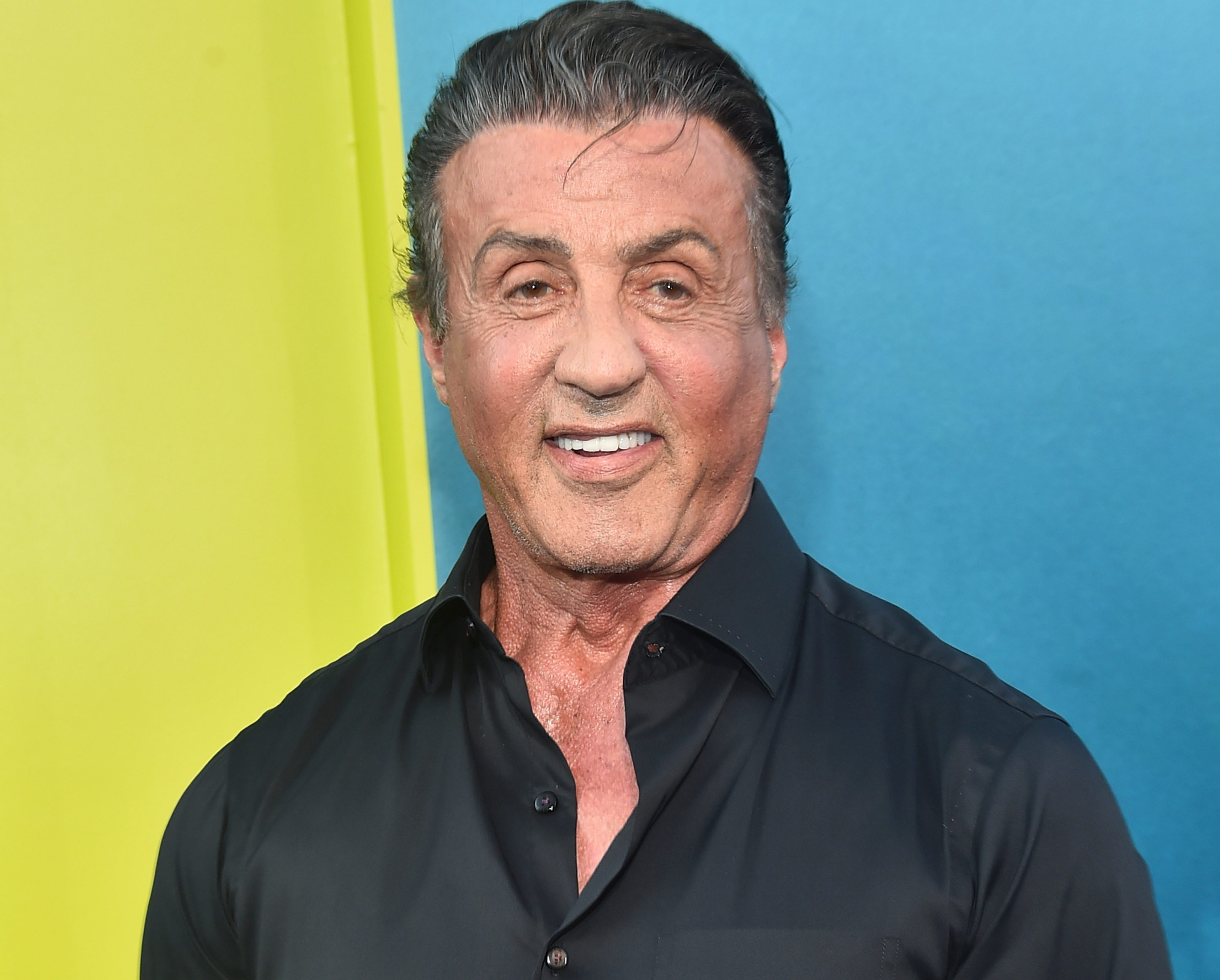 Sylvester Stallone is prepared to help Conor McGregor get some shares in UFC -and could sell him some of his