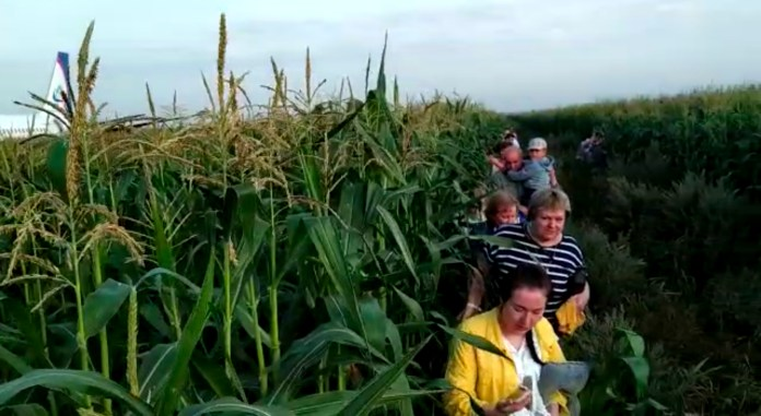 Passengers stand in a cornfield after evacuating from the aircraft