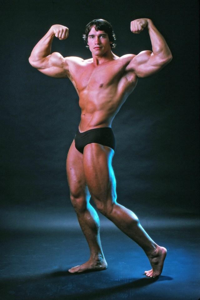He looked the spitting image of former bodybuilder dad Arnold Schwarzenegger