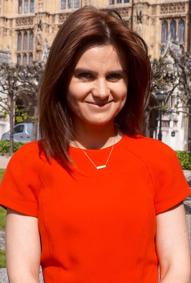 MPs demanded the PM stop using dangerous language as it fuels the toxic hate that led to the murder of Jo Cox in 2016