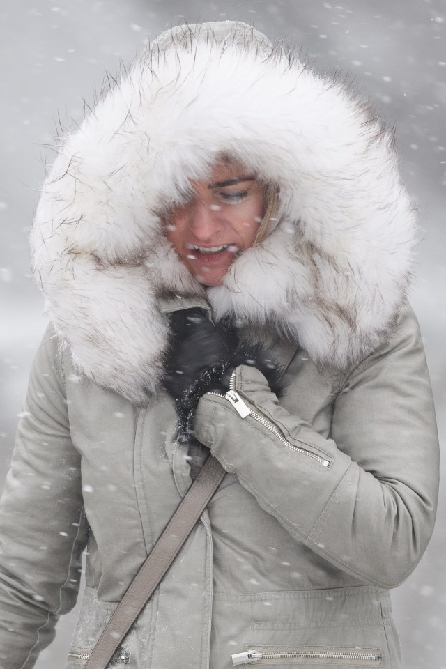The Beast from the East, which hit in February last year, saw gusts of up to 70mph and temperatures of -14C