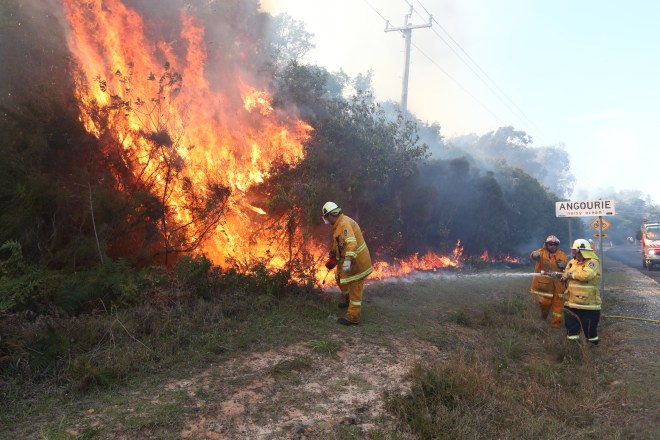 At least eight of the shocking wild fires are suspicious, say officials