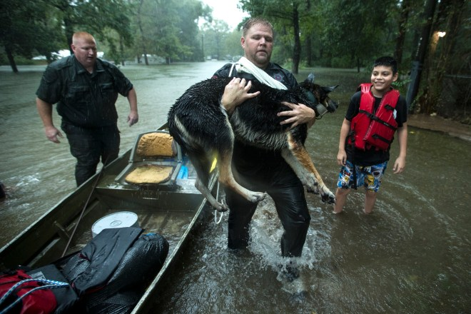 Splendora Police officer Mike Jones carries Ramiro Lopez Jr's dog, Panthea, from a boat