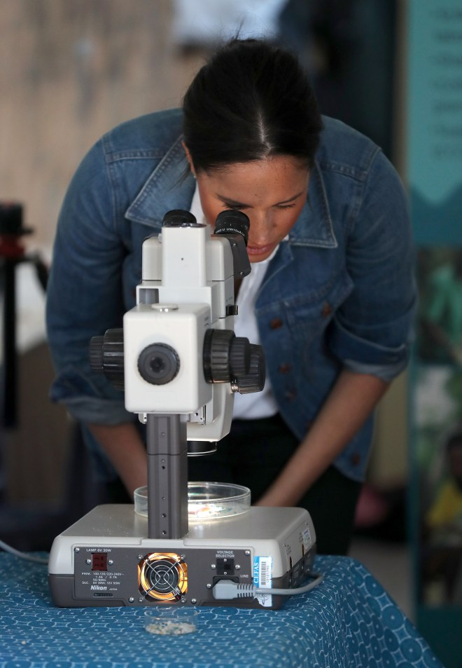 Meghan peers through a microscope as part of the Commonwealth litter project
