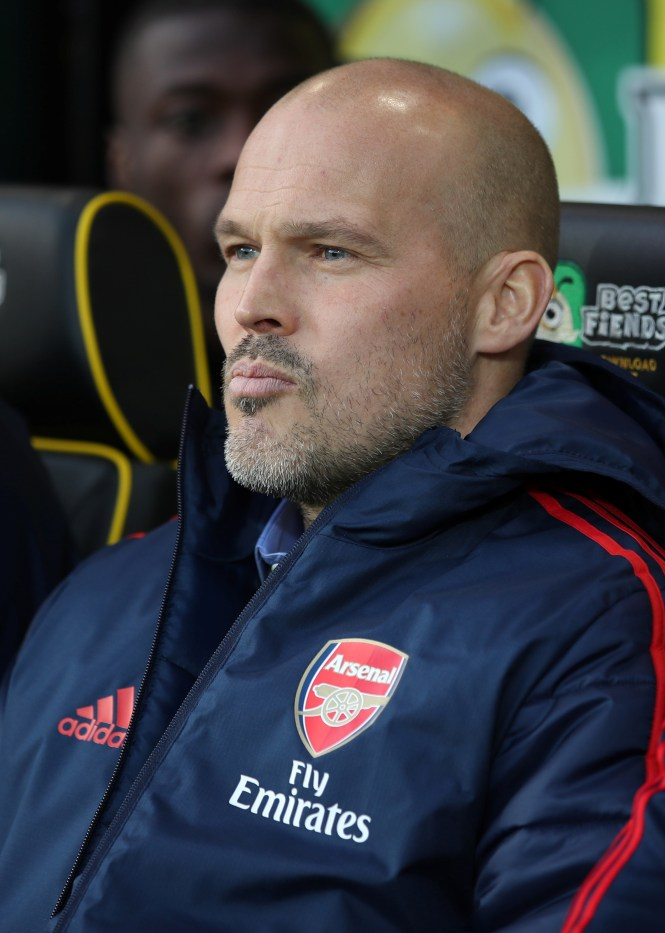Freddie Ljungberg is the bookies' favourite for the Arsenal job full time