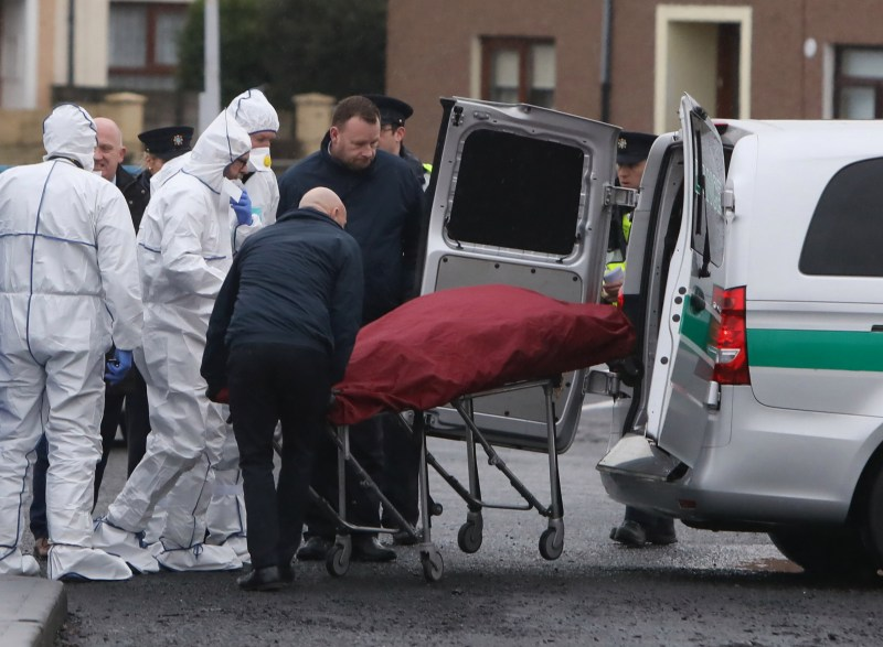 Forensic officers at the scene of the grim discovery in North Dublin