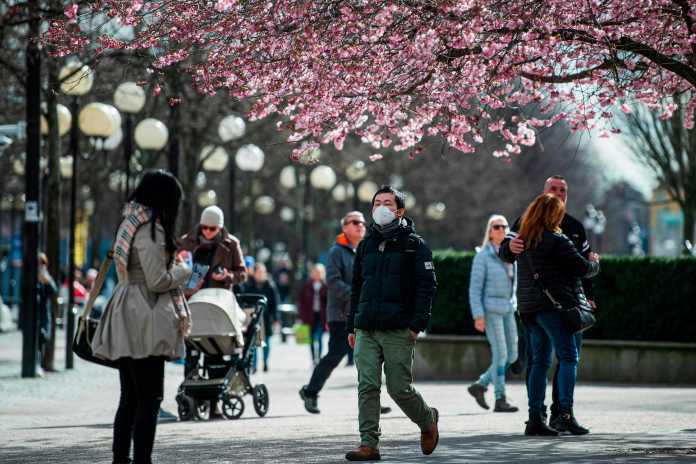 A man wears a protective mask as he visits the cherry blossoms at Kungstradgarden in Stockholm