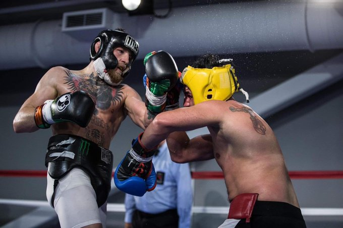 Conor McGregor maintains that Malignaggi was decisively beaten during their spars