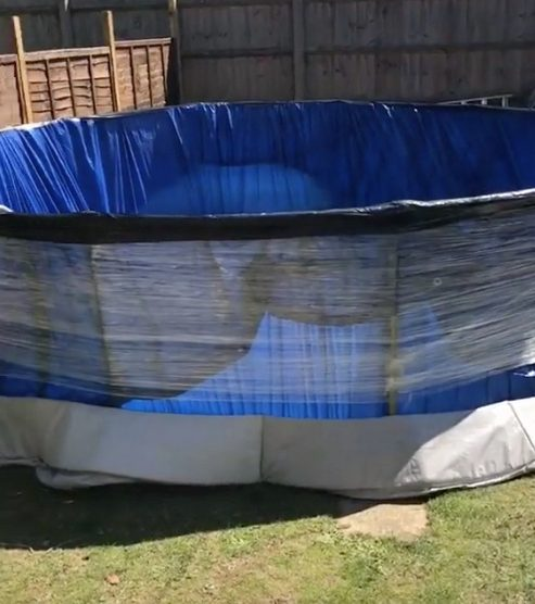 In a viral clip shared on TikTok, the clever woman shows how her family built the pool