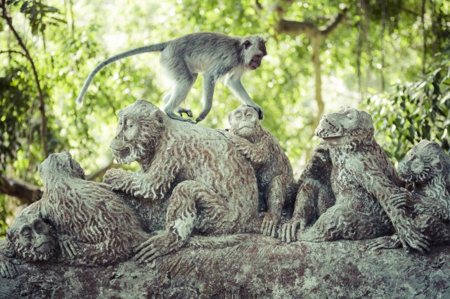 Monkey forests are worth a visit but go first thing when they are fed and at their friendliest