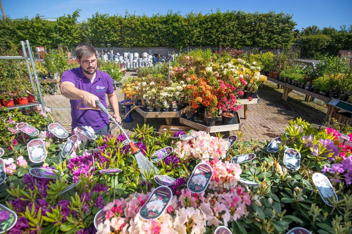 Are garden centres open in lockdown?