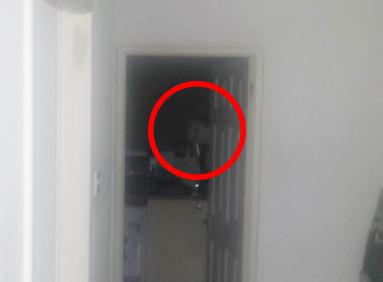 L'homme a fait ses valises et est parti après avoir repéré cette silhouette macabre dans son appartement