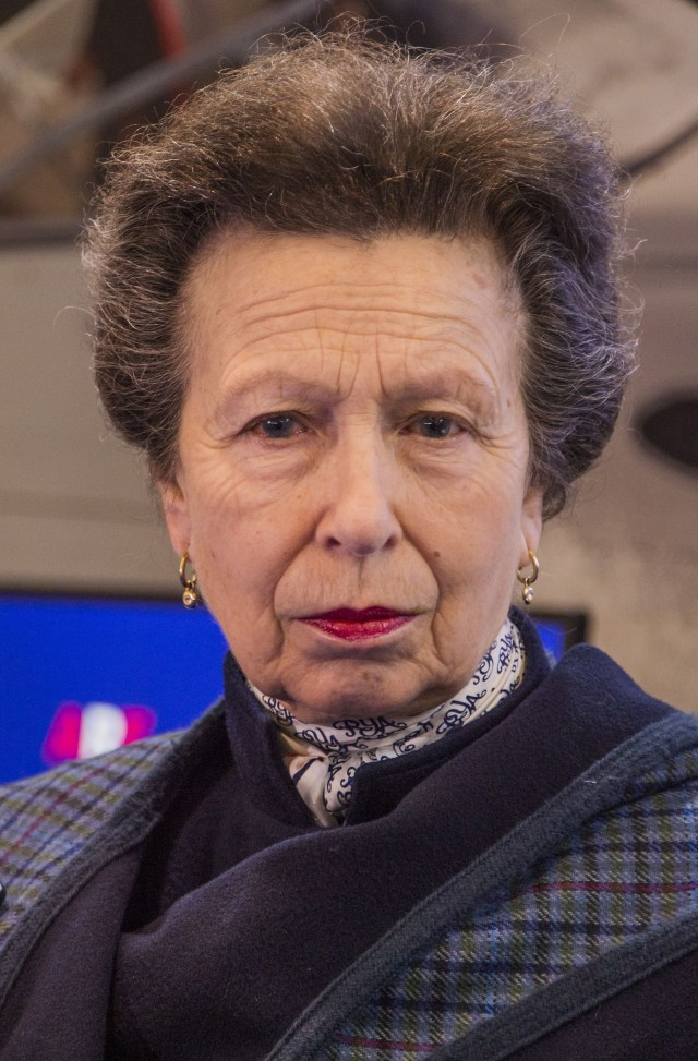 Princess Anne is tipped to take over from Prince Harry as Captain General of the Royal Marines