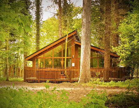 We've found amazing log cabins across the UK, including this one in Norfolk