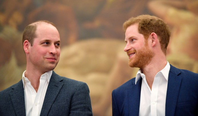 Prince William's rift with Harry is the 'hardest thing he's been through since Diana died', it is  claimed