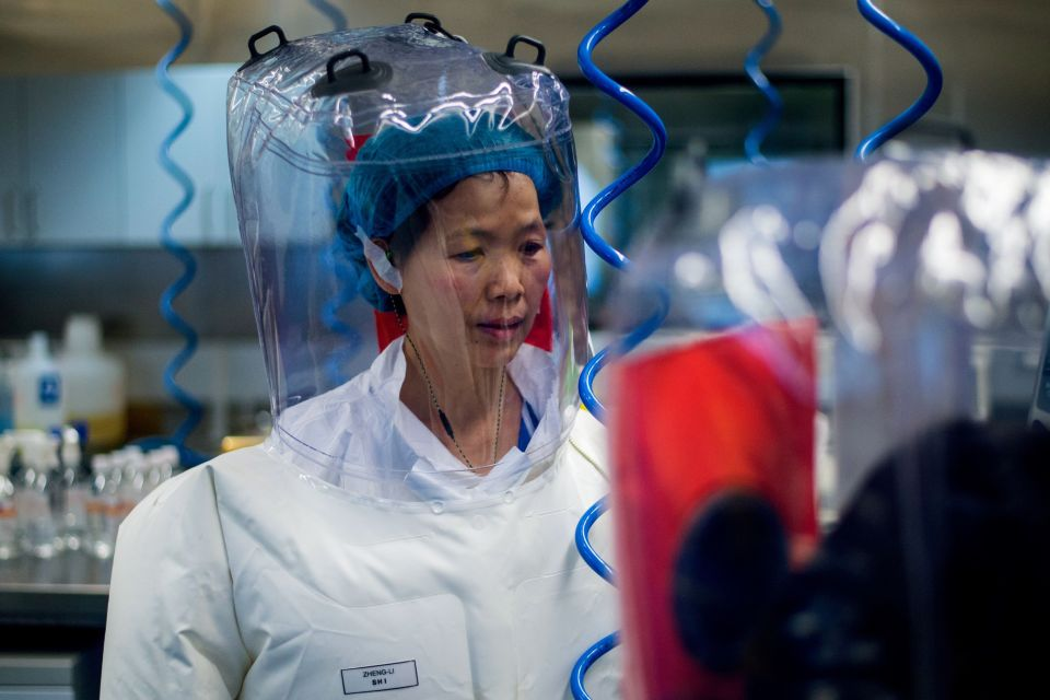 A scientist at the Wuhan Institute of Virology - the facility at the centre of the bombshell theory
