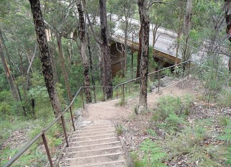 The hiker had returned from a walking route in Glenbrook, Australia