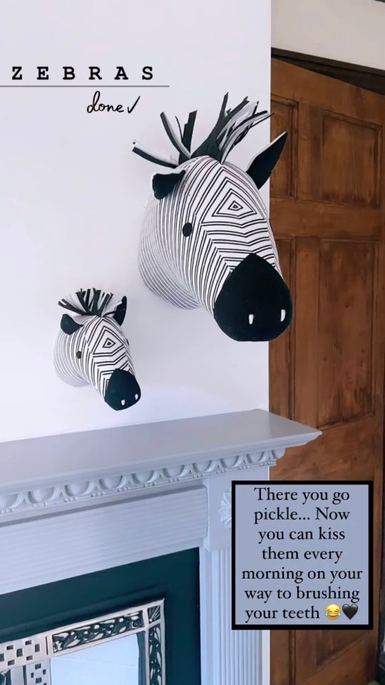 These Zebras cost just £8 in Dunelm
