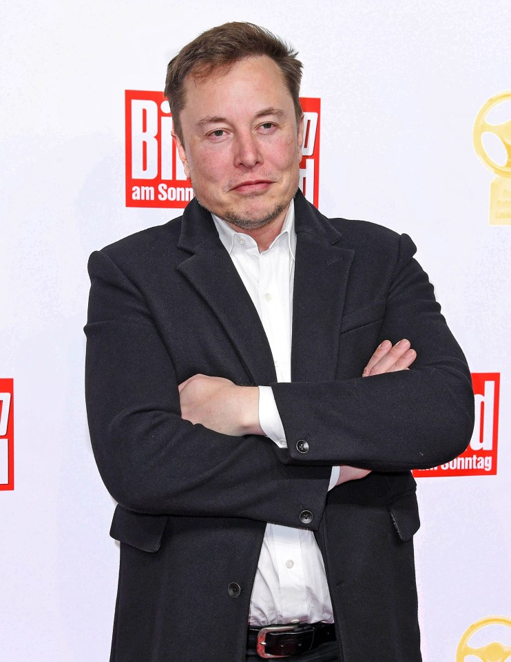 Did you know Robert Downey Jr based his character Tony Stark on Elon Musk?