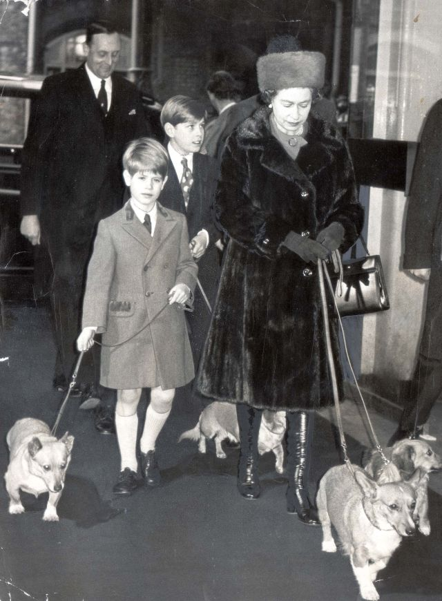 Black and white photos from the archives show him looking after The Queen's corgis. Pictured: The Queen with Andrew and Edward at Liverpool Street Train Station in 1971