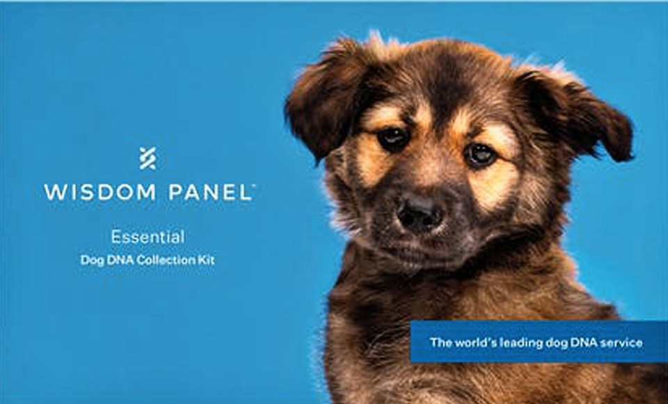 Wisdom Panel is giving away two DNA swab testing kits,