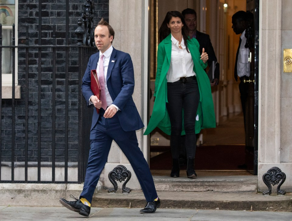 The Health Secretary controversially hired Coladangelo last year